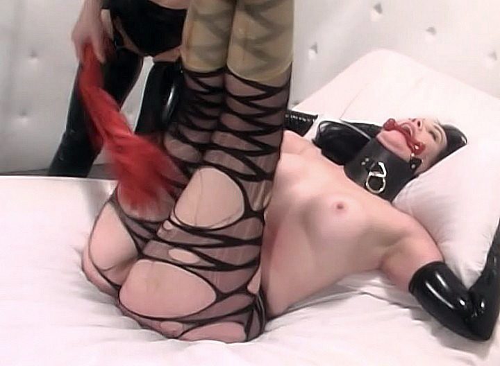 This naughty slave is so out of control, Mistress Anastasia has to keep her in the mental ward of her mansion.  She's getting a daily dose of corrective therapy, with plenty of whipping while she remains tied up.  The secret is, she's not crazy at all, she just likes the fuck!