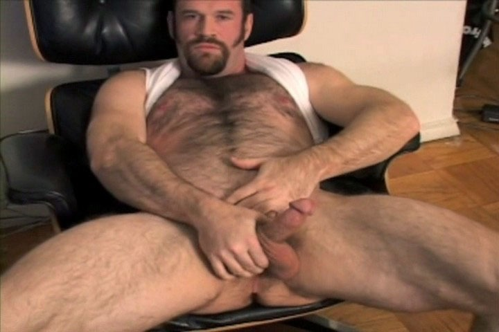 pappa big bear hardcor porn video